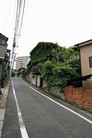 20110522_005774.JPG