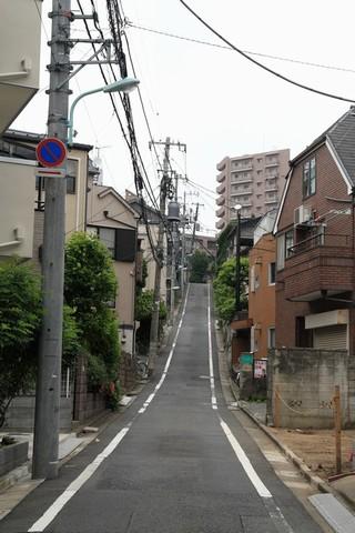 20110522_005775.JPG