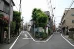 20110522_005776.JPG
